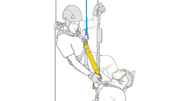Release and rescue of a victim on a fall arrest system, by two co-workers