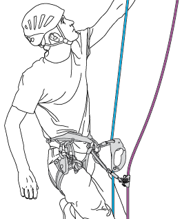 Primary system: one ascender on the belay rope. Secondary system: one ascender on the backup rope.