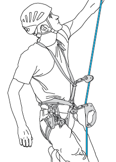 Primary system: one ascender on the belay rope. Secondary system: a second ascender on the same rope.