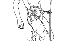 Appendix 5: Analysis of solutions observed in the field - Use of a single ascender with knots in the rope.