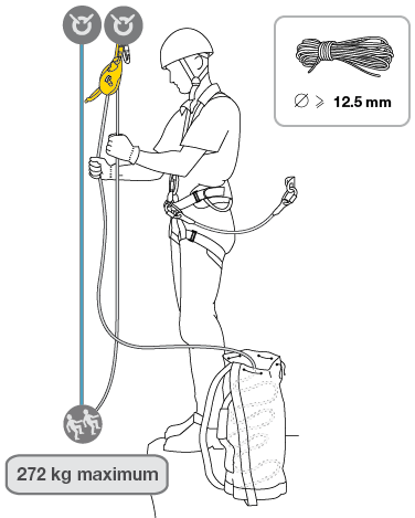 Belaying loads up to 250 kg with the I'D S.
