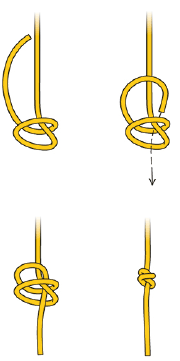 Double overhand knot (for the end of the rope, or to make a rope loop).