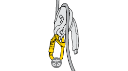Choice of carabiner for attaching a descender with a safety gate (I'D S, RIG, STOP...) to the harness